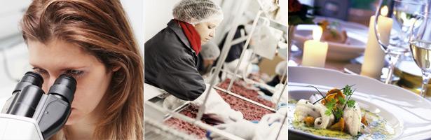 beneficios-de-invertir-en-seguridad-alimentaria|gha